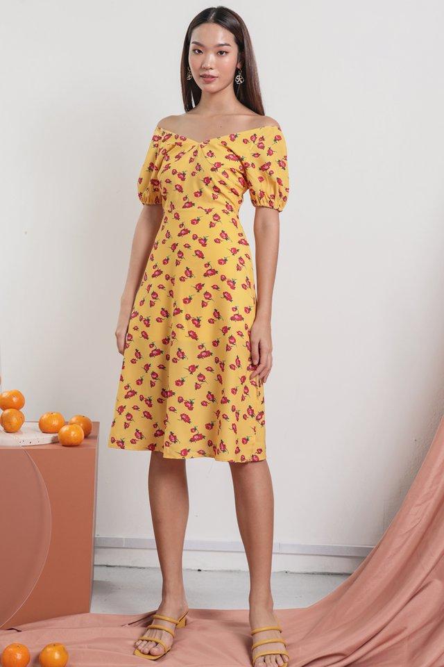 Belle Puffy Sleeve Dress (Roses)