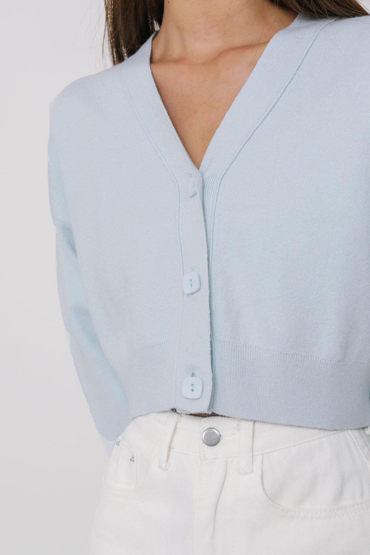 Euphoria Knit Cardigan (Baby Blue)